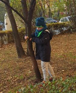 Sebastian-Gawlik-pomiar-średnicy-drzew-rozpoznawanie-gatunków